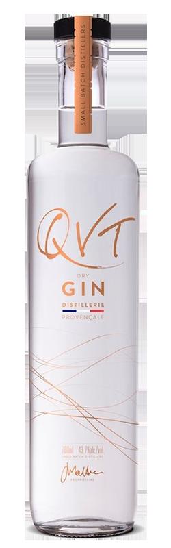 qvt-gin